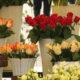 livraison de fleurs a paris