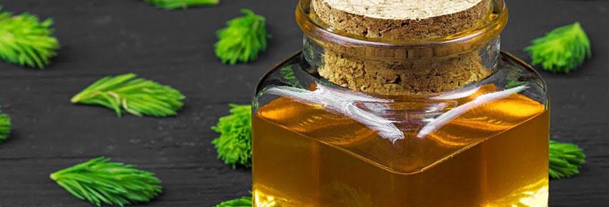 Vente de miel de sapin et de gelée royale